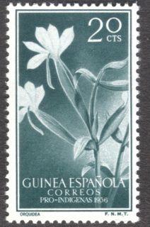 Spanish Guinea, flora, orchid, 1956