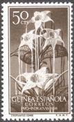 Spanish Guinea, flora, Strophanthus kombe, 1956
