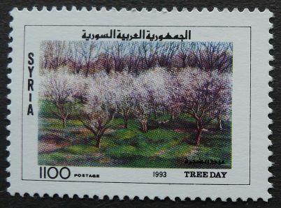 Syria, Tree Day, 1993