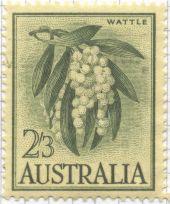 Australia - Acacia species, wattle. Probably Acacia pycnantha, our national flower