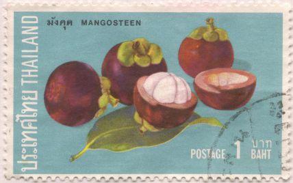 Thailand - Garcinia mangostana, mangosteen