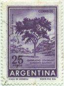 Argentina - Schinopsis balansae