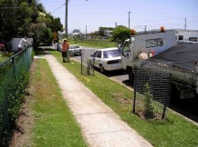 Council lets us plant Banksia aemula street trees Feb '05