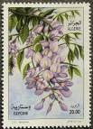 Algeria, probably Wisteria sinensis, 2011