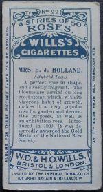 Rose, Mrs E. J. Holland
