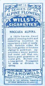 Noccaea alpina, Wills' Alpine Flowers, 1913