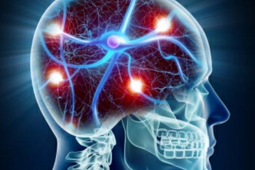 Stress Hormones and Obesity