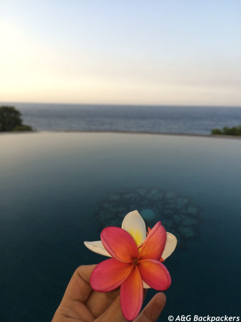 Bedulu resorts' infinity pool and Balinese flower