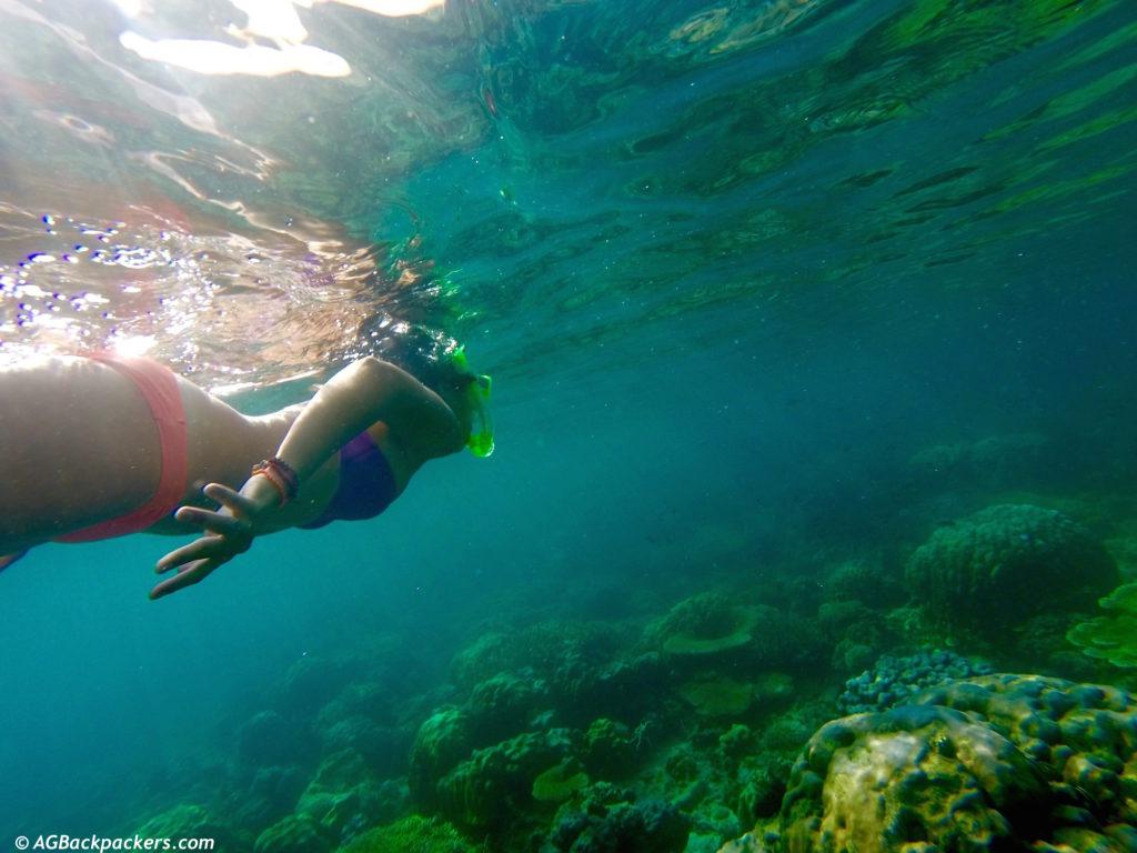 Snorkeling in twin corail