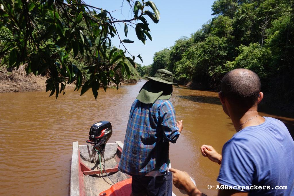 En pleine action, pêche aux piranhas