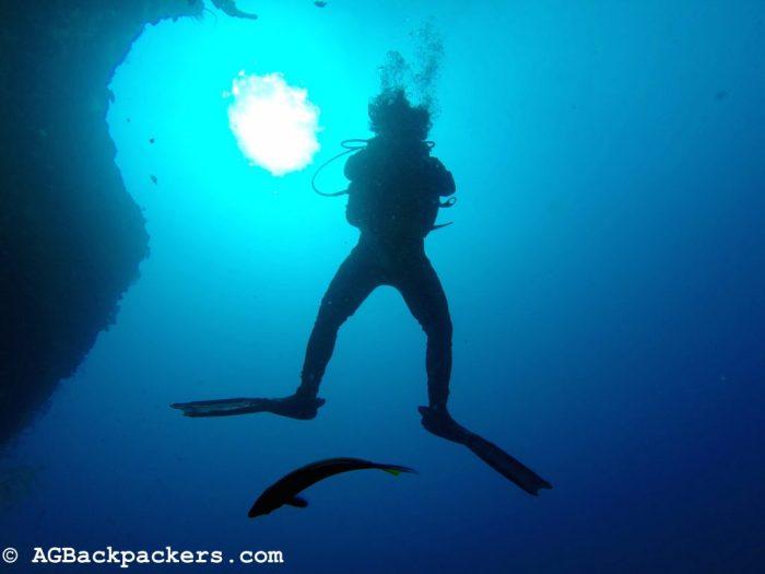 Plongée avec notre guide