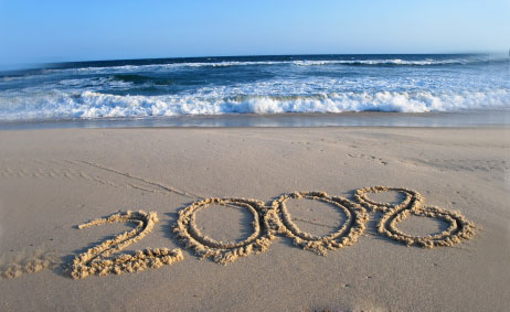 Image result for year 2008