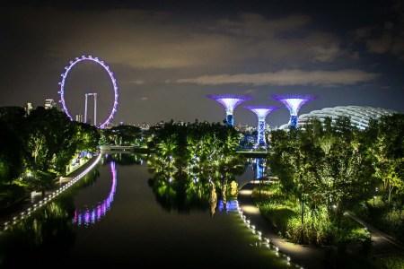 Guía: Qué ver en Singapur. De noche en los Gardens By The Bay mirando a los Groove Trees y la Singapore Flyer Wheel