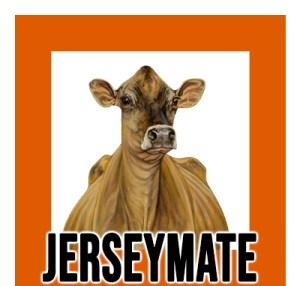 New.-JerseyMate