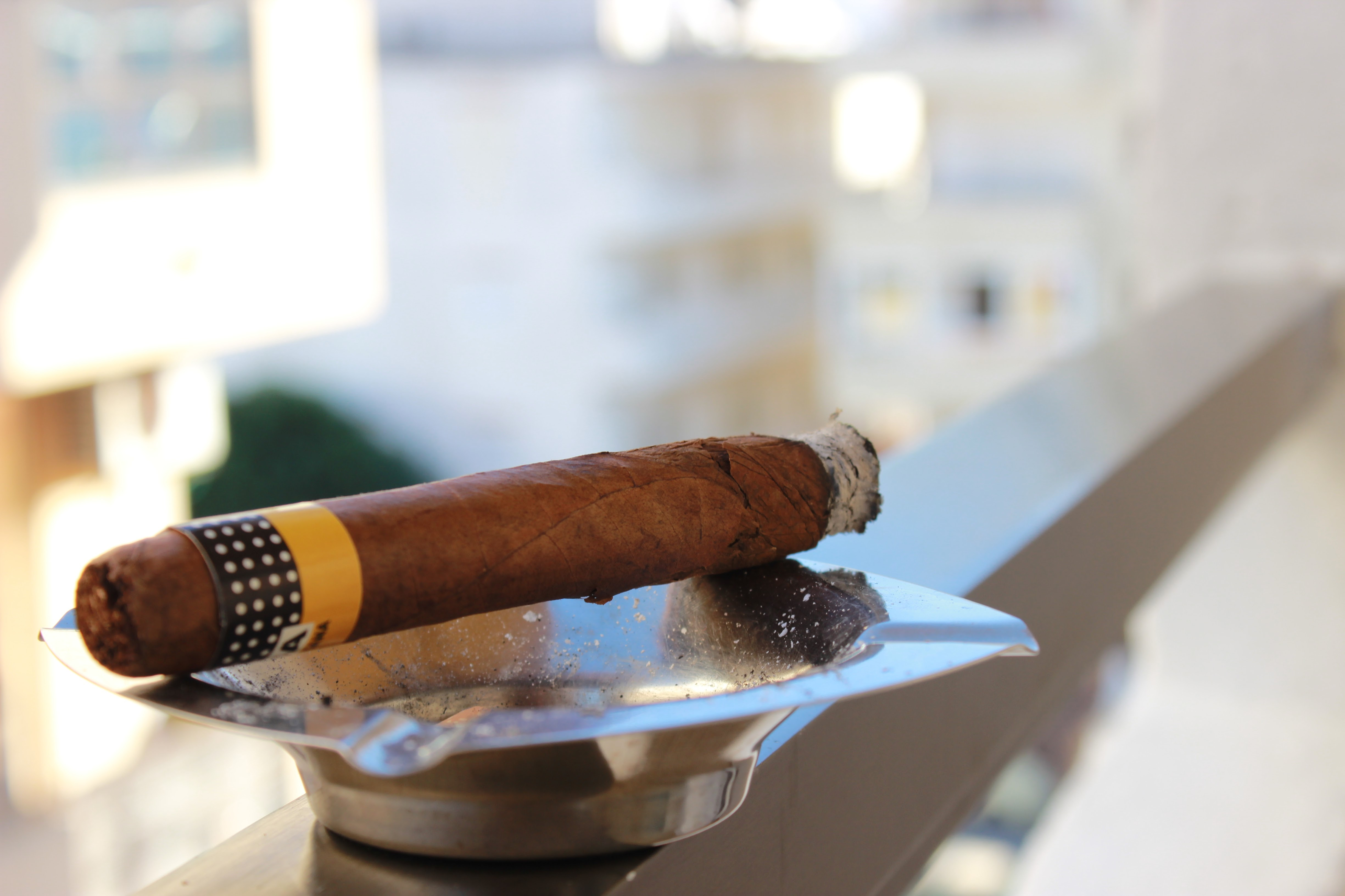 The Cigar Guy | Alma Fuerte - Plascencia Cigars | JerseyMan