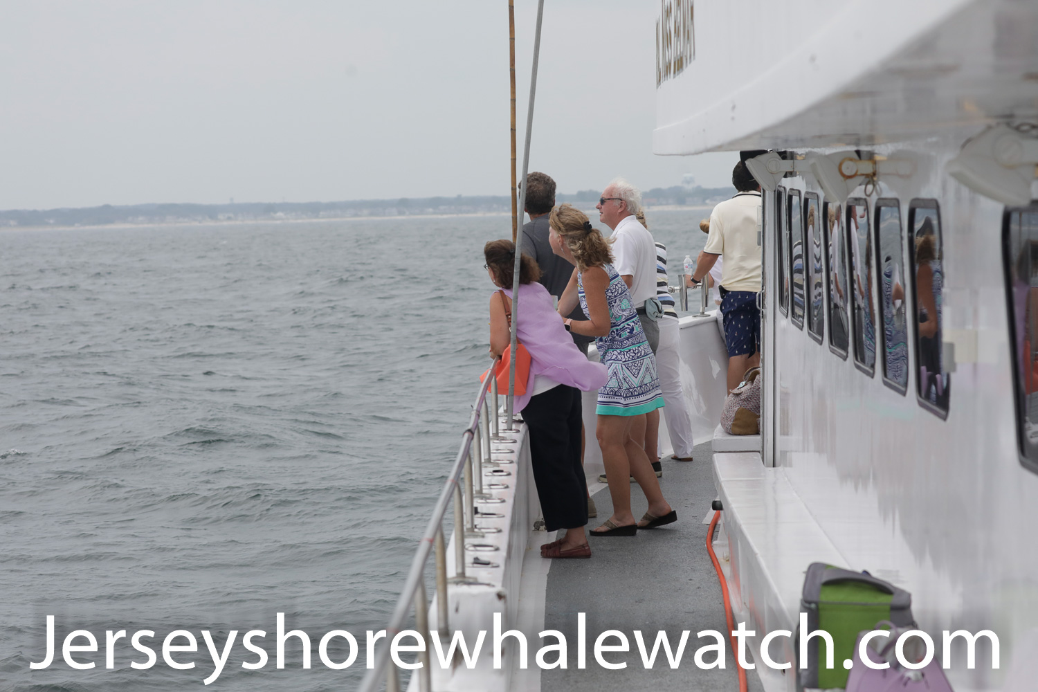 , Fundraiser Whale Watching Sunset trip last night Belmar, Jersey Shore Whale Watch Tour 2020 Season