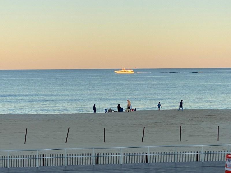 , Saturday whale watching trip., Jersey Shore Whale Watch Tour 2020 Season