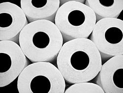 toilet-paper-rolls