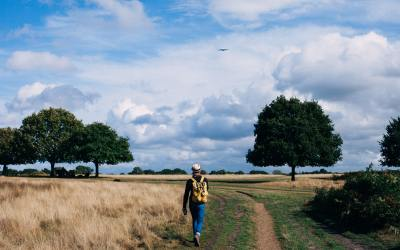 Why You Should Supplement Your Gym Routine With A Walk In The Park