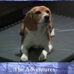 Review – The Adventures of Porthos