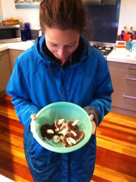 Wild mushroom picking, Taieri Mouth (near Dunedin)