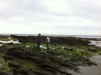 Exploring the rocks, Kuri Beach (near Dunedin)