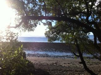 Sunrise, Ruby Bay, Motueka