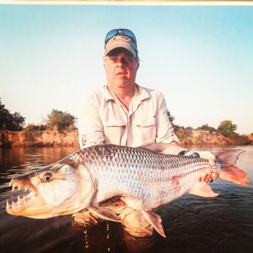 Tim Gunderman catches a heck of a #Tigerfish. Good job!