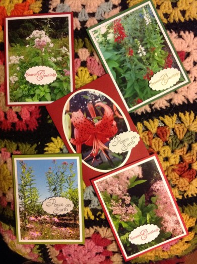Handmade garden holiday cards by jessecology with scenes from Saratoga County gardens