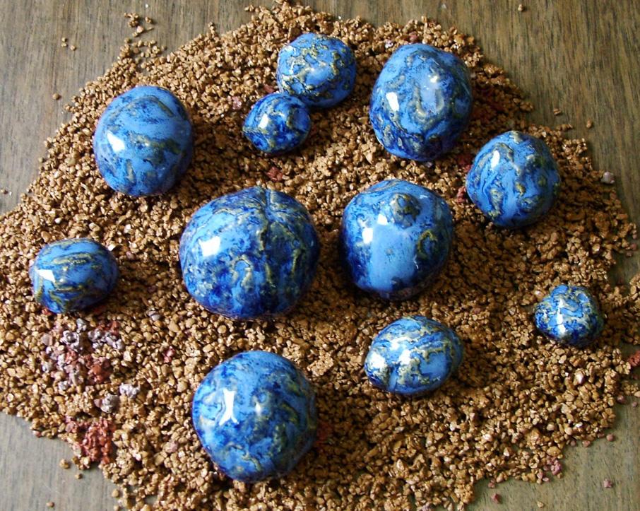 Mars Blueberries prev in prog crop