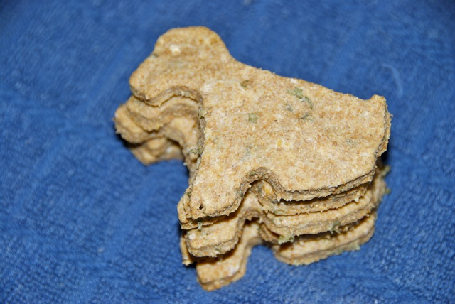 Homemade Parmesan Herb Dog Treats