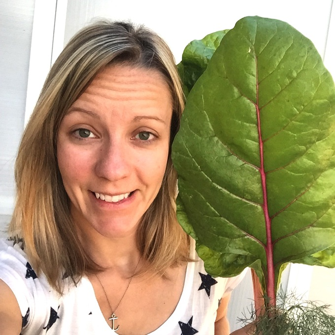 Giant Raiinbow Chard Leaves