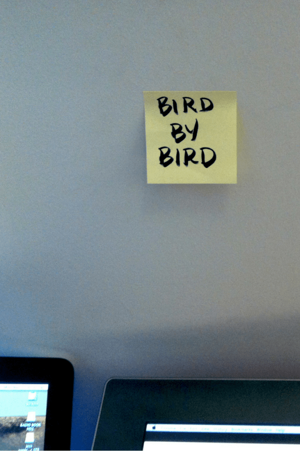 Bird by bird. You write and publish a book one word at a time.