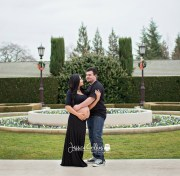 Maternity Photographer in Guerneville Ca
