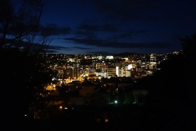 Wellington at night