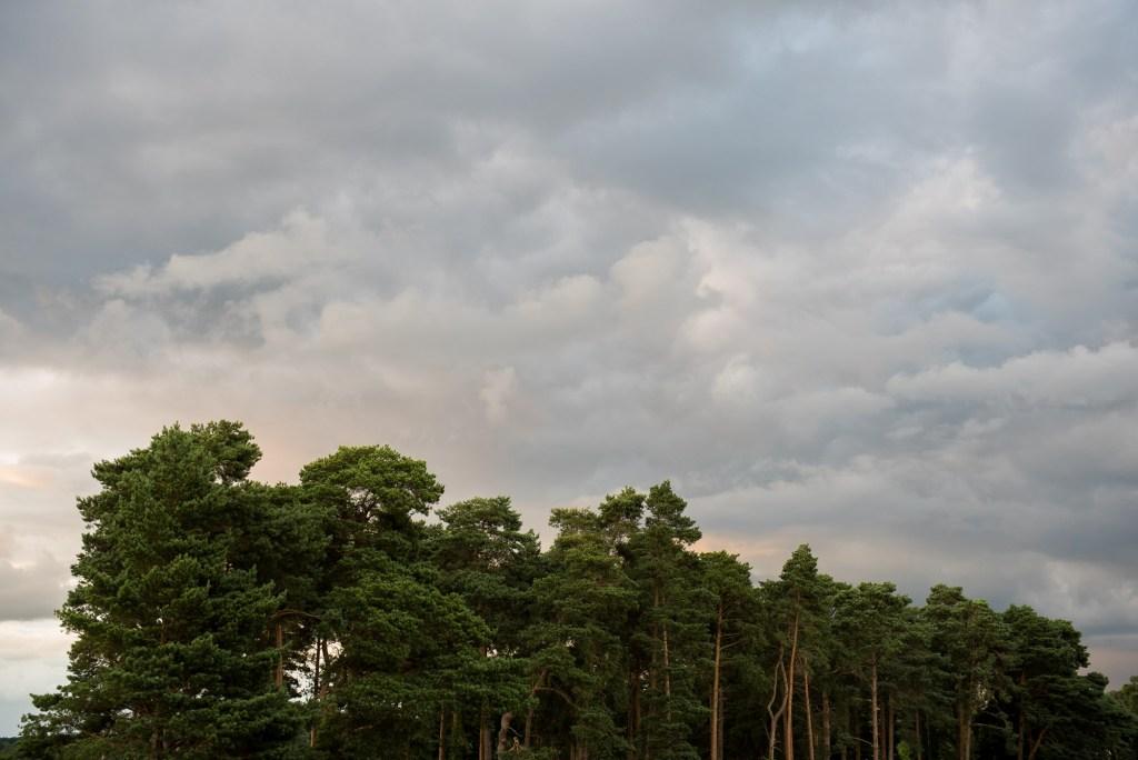 Nature photography Berkshire