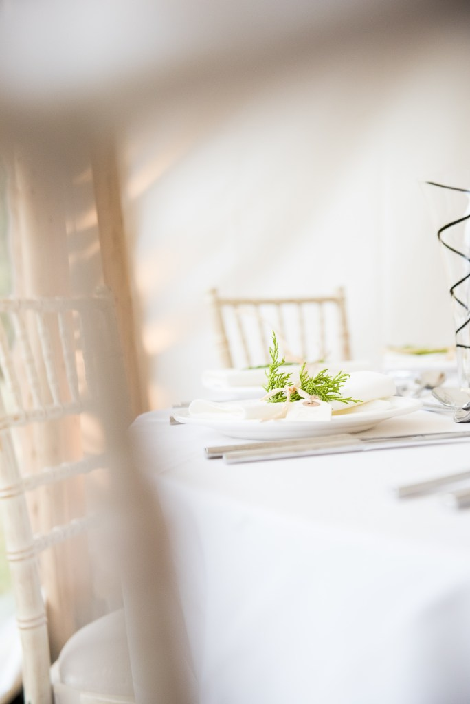Outdoor Wedding Ceremony, Surrey Wedding Photography, Wedding Place Setting With Green Fern Favour