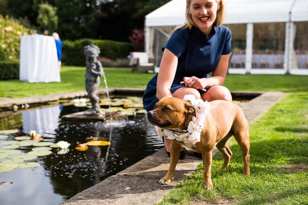 Outdoor Wedding Photography Surrey,  Cute Dog at Garden Surrey Wedding with Flower Collar