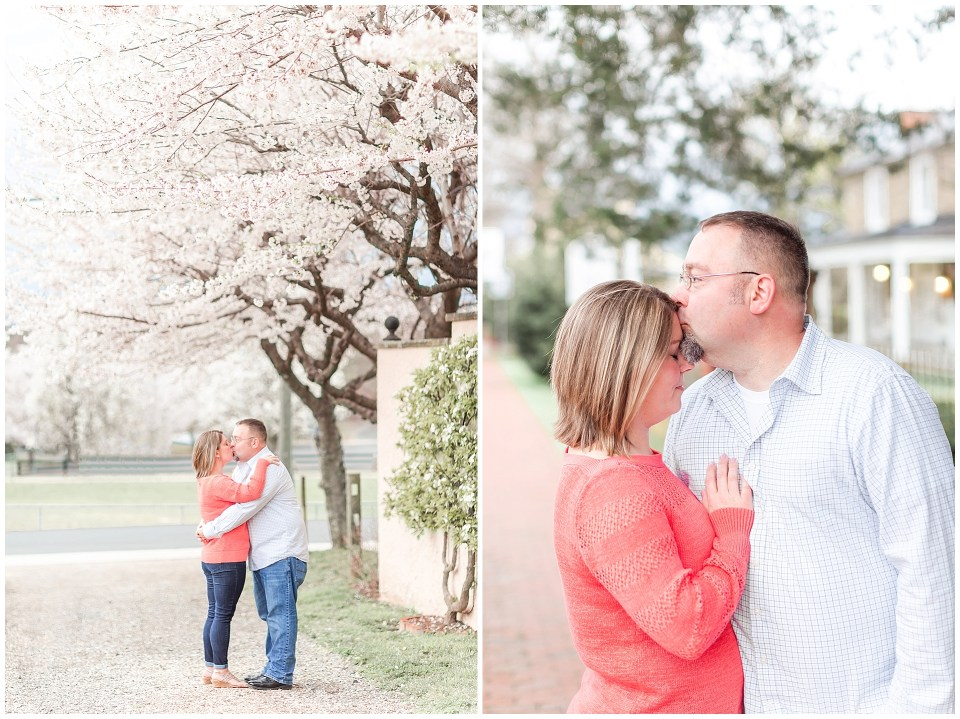 Cherry Blossom Engagement Session in Middleburg, VA Northern VA Wedding Photographer