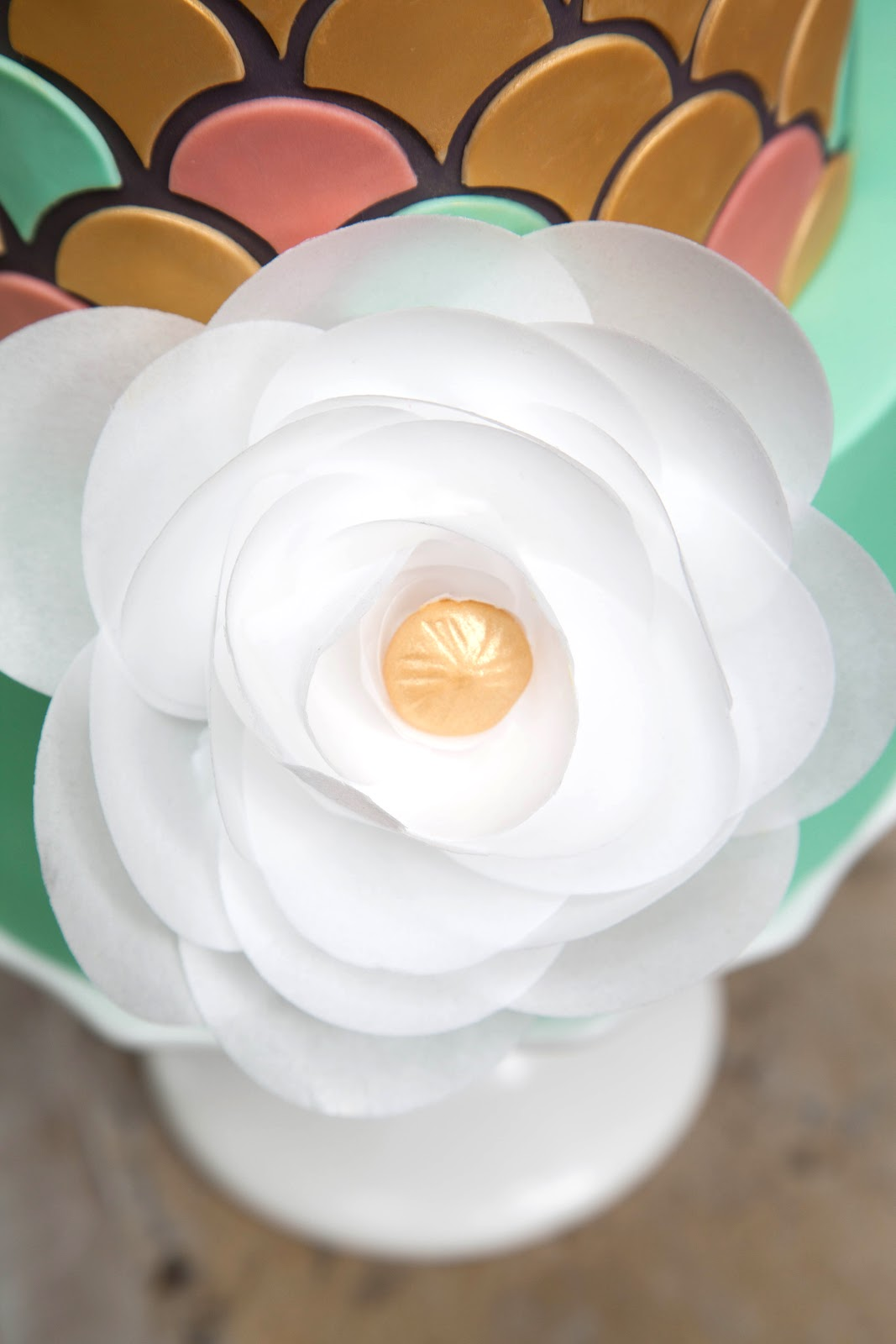Wafer Paper Flowers Tutorial Video Jessica Harris Cake Design