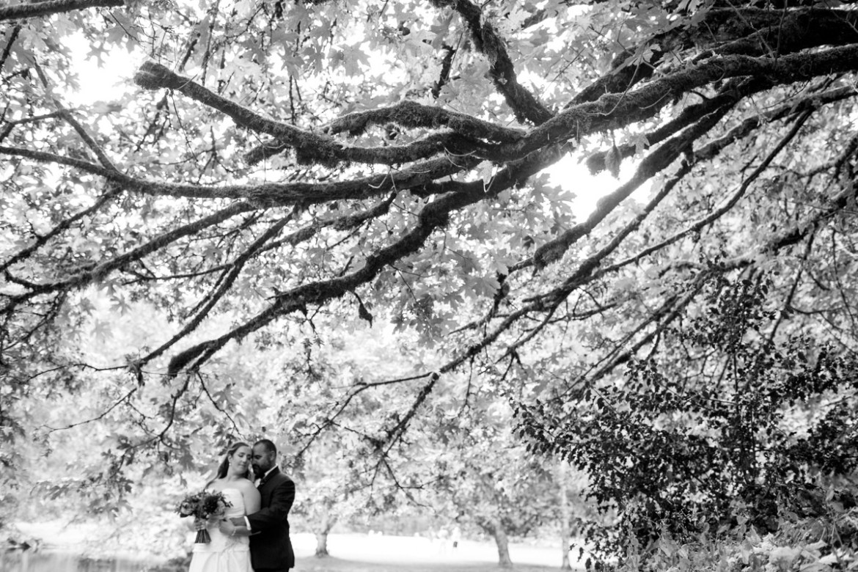Oregon-Weed-Wedding-001 (1)