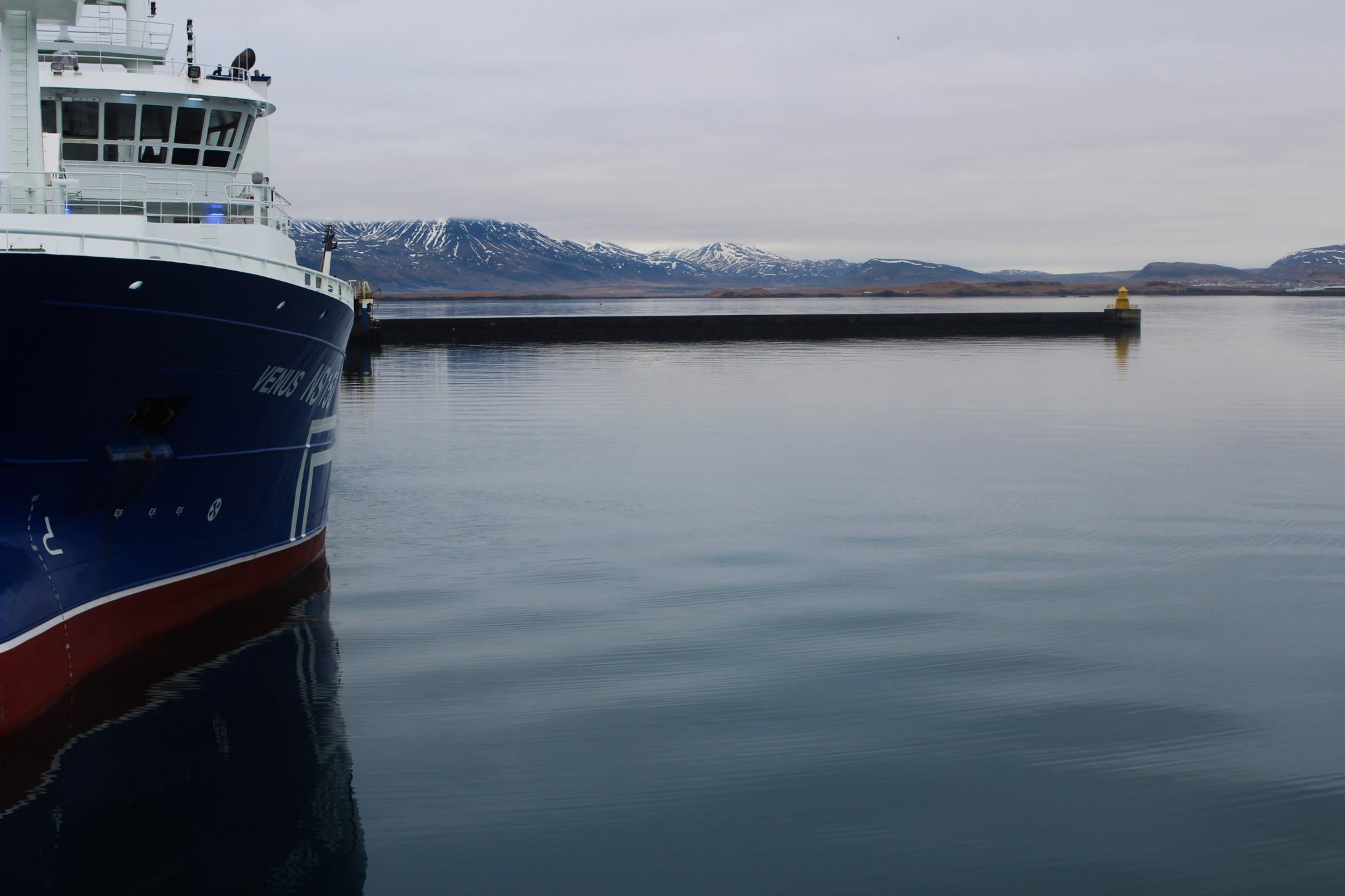 Whale-watching-Iceland-boat