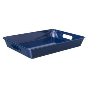 blue target tray