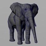 elephant_Wip5