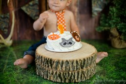 Greenfield, Indiana, Photography, Photographer, Photos, Jessica, Green, Greenfield, IN, JLCustom Photography, Jessica Green, Legler, Jessica Legler, Jessica Green Photography, 46140, Central Indiana, Indianapolis, First Birthday, Animal Birthday cake,One year old,Ribbons,Tree stump,Tie, Jeans,Cake
