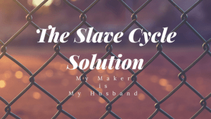 The Slave Cycle Soulution