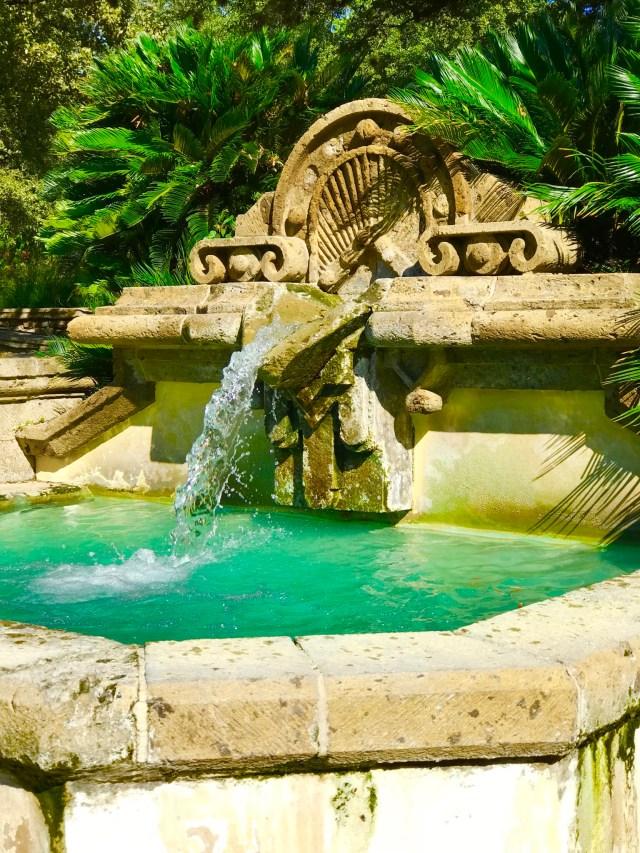 Take A Hike: San Antonio Botanical Garden