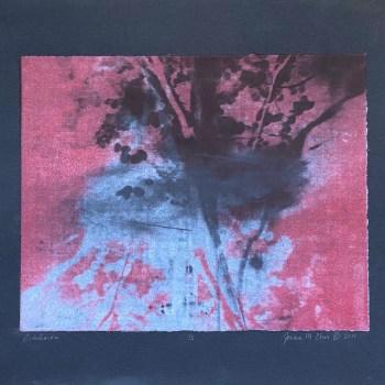 "Limited Edition: ""Emulsion"" - Solar Prints"