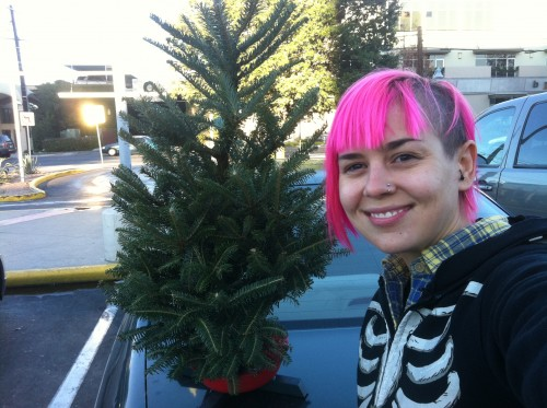 hello baby tree!