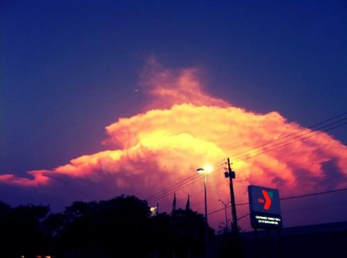y sky